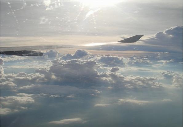 飞机上,博博客专访活动,飞机,马尔代夫,马航,蜜月
